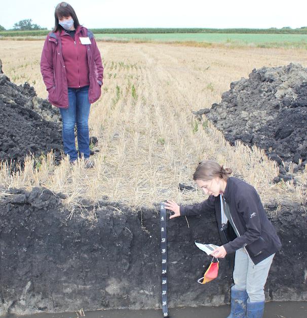 Soil pit Minnesota -- bottom of slope