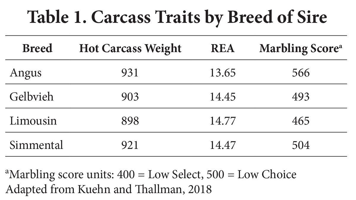 Carcass traits chart SDSU