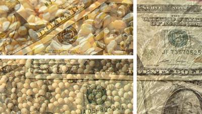 Grain market money fade