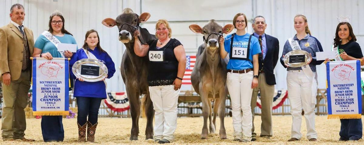 2020 Southwestern National Brown Swiss junior show grand champion and reserve grand champion