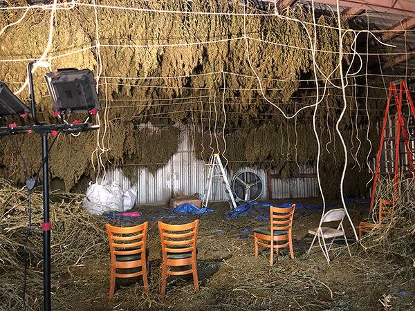 Loroff Kansas Dept of Ag hemp crop drying