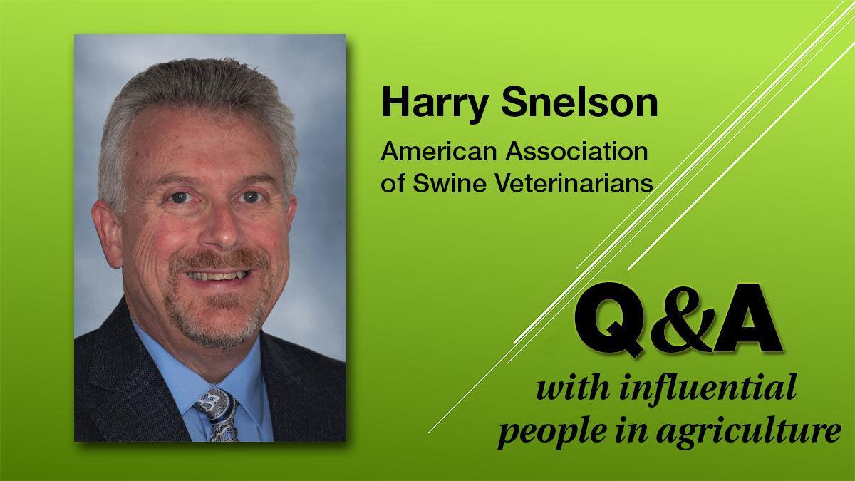 Harry Snelson