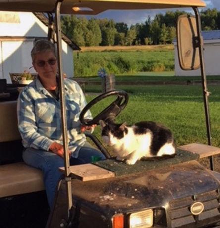 'This' is a Farm Cat Corner member.