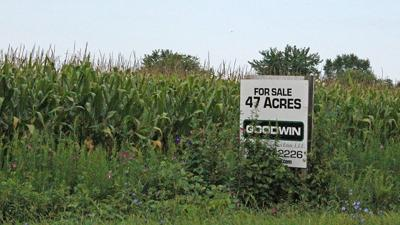 For sale sign at farm field
