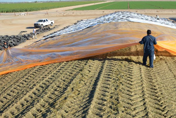 Know your silage plastic potential