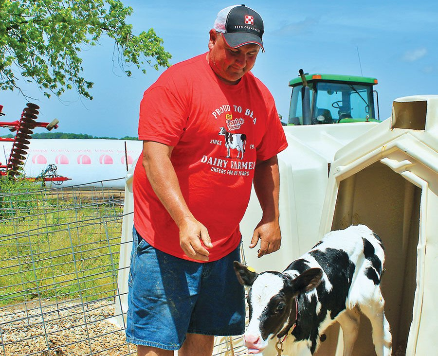 Frank Doll checks on a calf