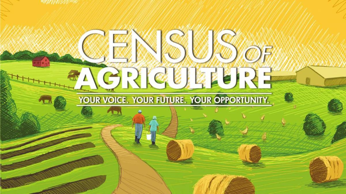 2019 Agriculture Census graphic logo