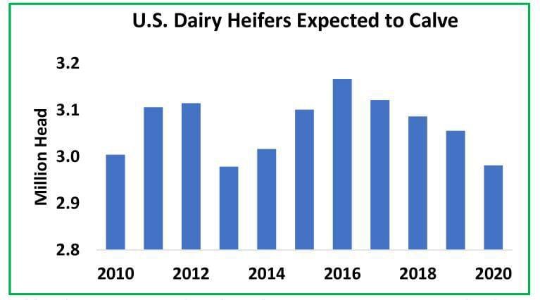 U.S. Dairy Heifers Expected to Calve