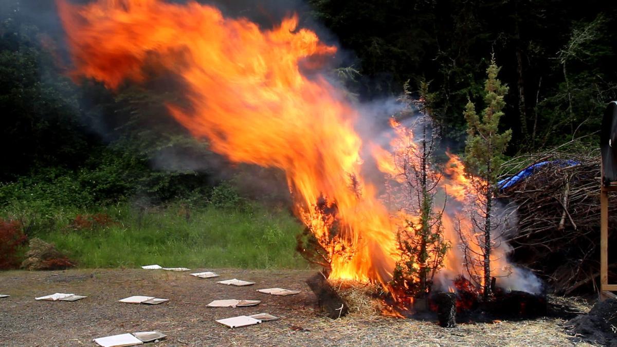 Prescribed burn
