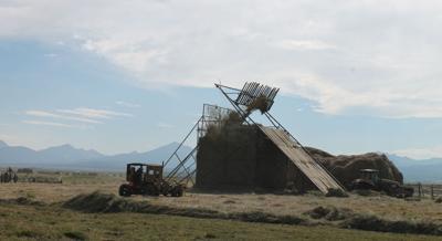 loose haying