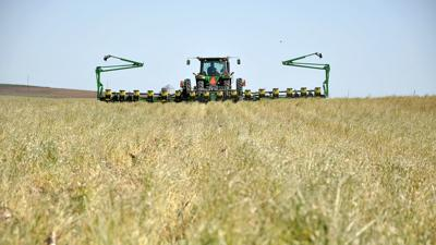 no-till planting and cover crops
