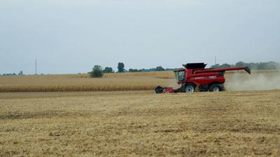 Dain Twait harvests soybeans