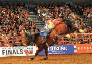 Circuit Finals brings best professional cowboys; starts high school challenge