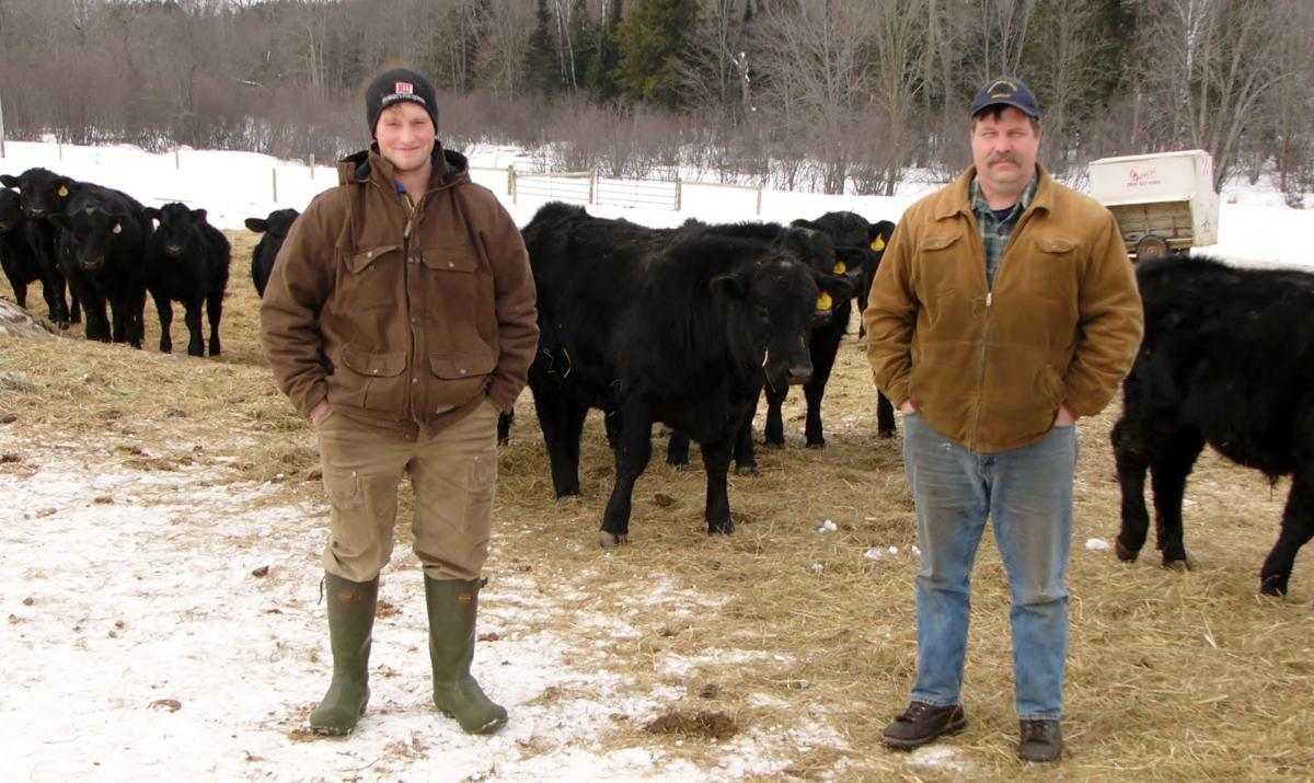 Two Hallstrand generations with bulls behind