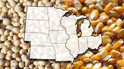Corn and soybean Midwest map
