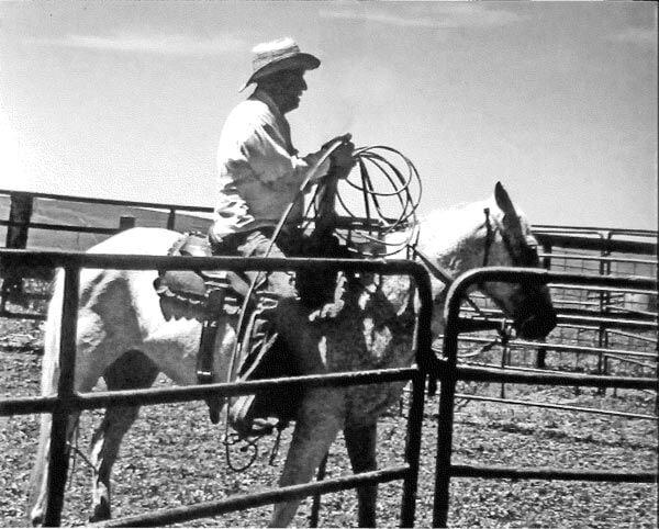 Bill Thurston Nebraska Sandhills Cowboy Fall of Fame