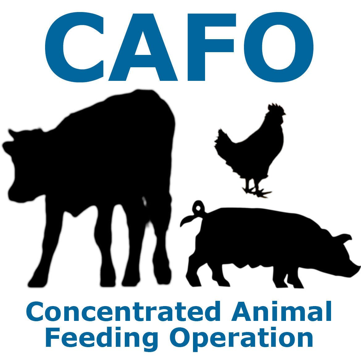 Image result for Concentrated Animal Feeding Operation Permits logo