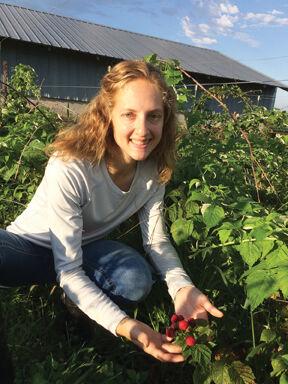 Berry growers raspberries