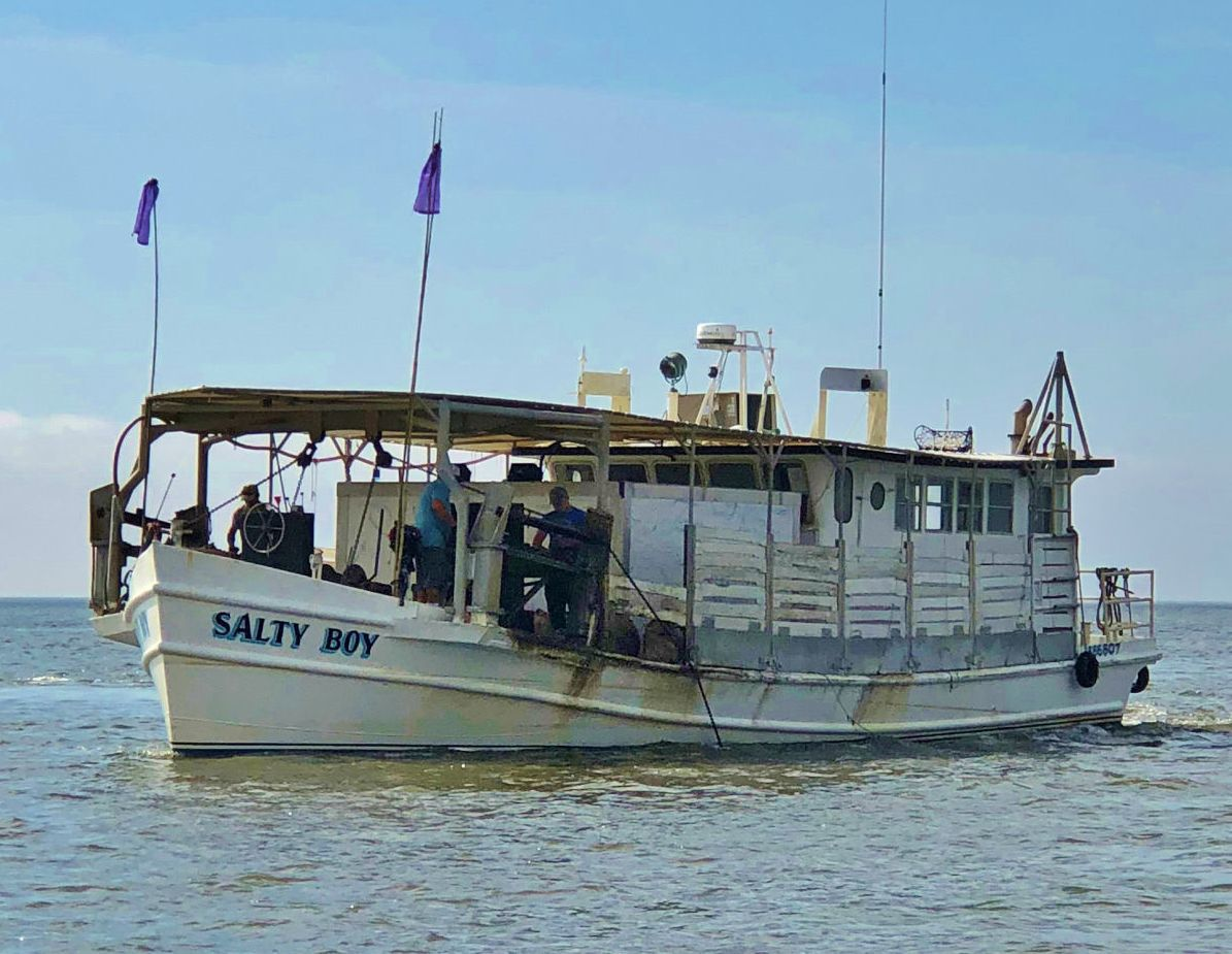 Salty dog oyster boat