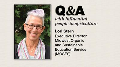 Q & A Lori Stern