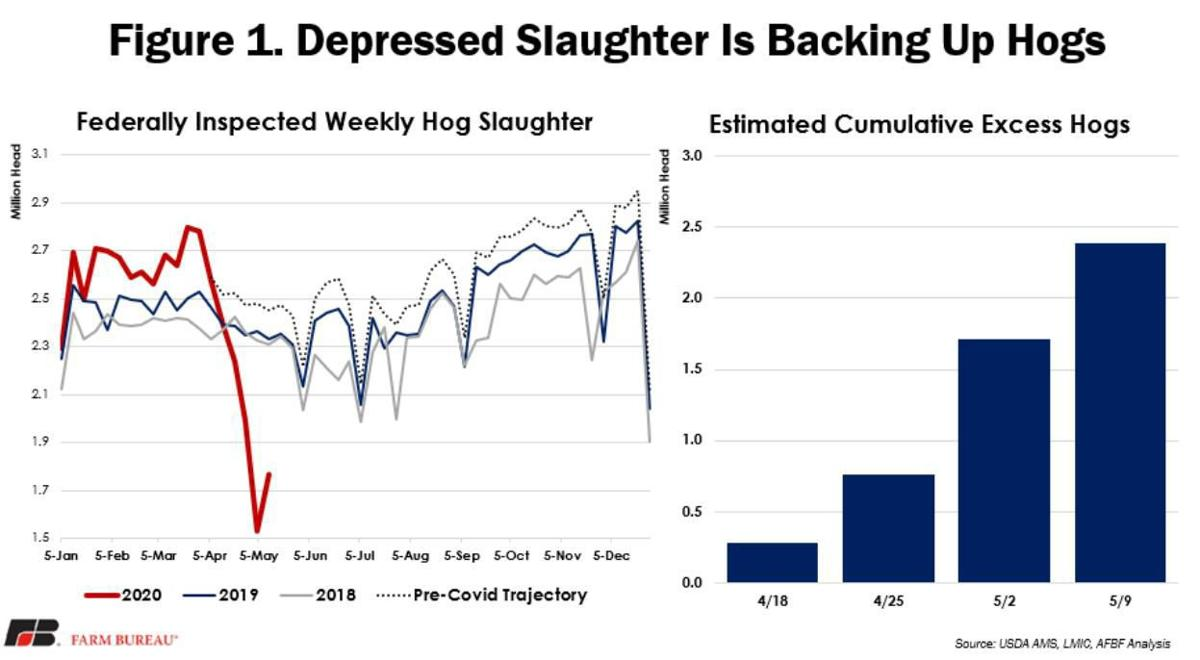 Depressed Slaughter is Backing Up Hogs