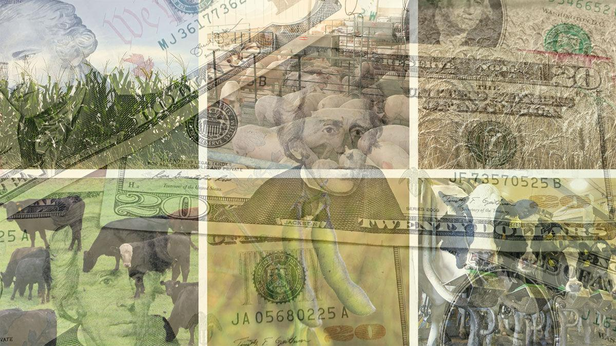 Farm images with ghosted money