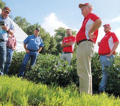 Soybean field days offer abundance of information