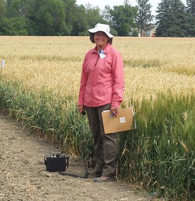 Jamie Sherman, MSU barley breeder