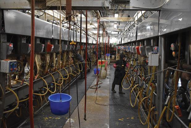 KC Dairy parlor