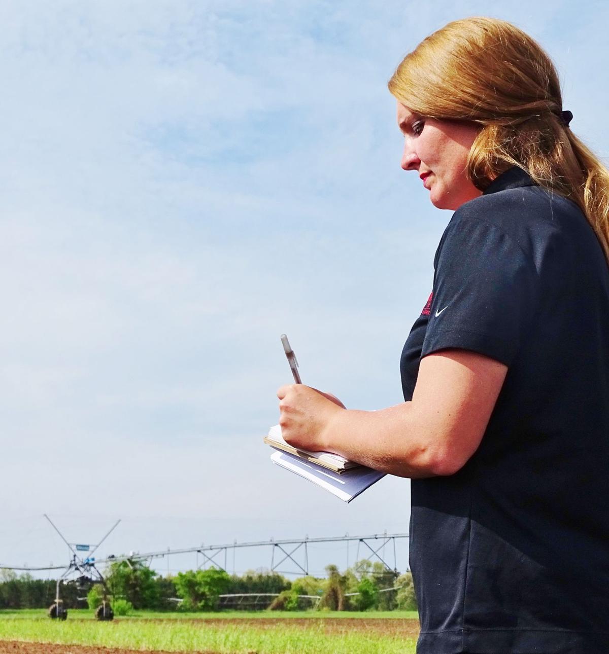 Lynn Leahy evaluates potato research plots