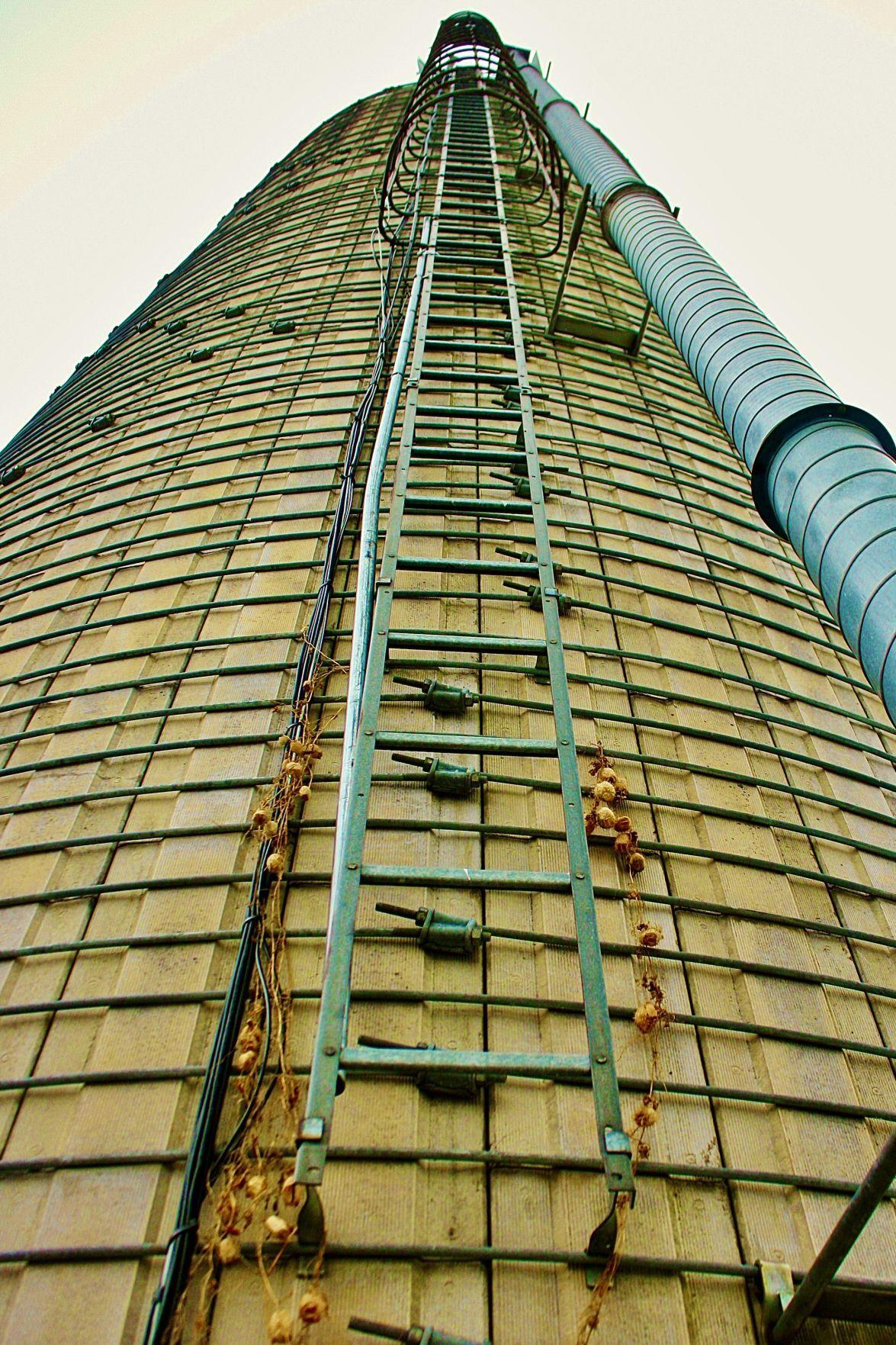 Tall silo