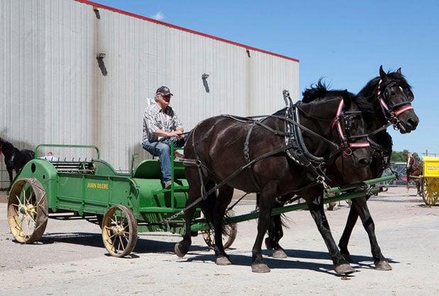 Draft horse manure spreader