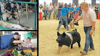 Illinois State Fair Springfield