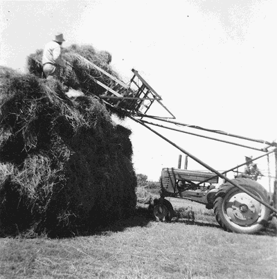 Making hay in a whole new way