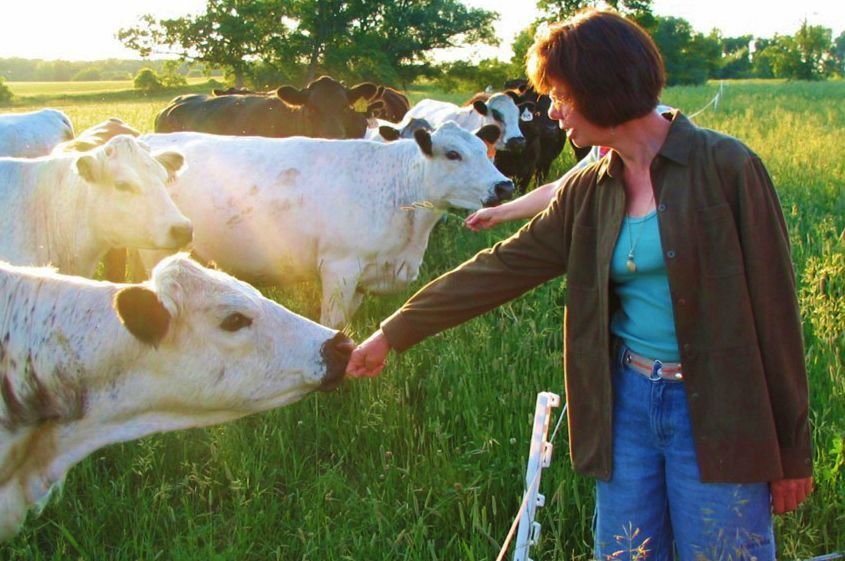 Woman visiting with cow