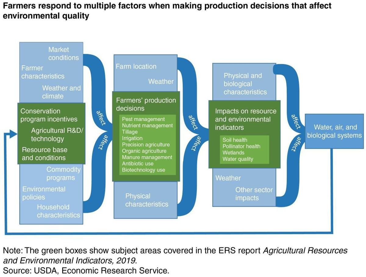 Farmers respond to factors when making production decisions that affect environmental quality