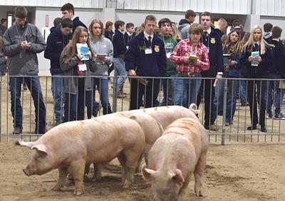 FFA livestock judges earn shot at state