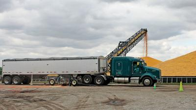 Truck unloading corn