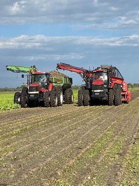 Brandt Farms Sugarbeet harvest