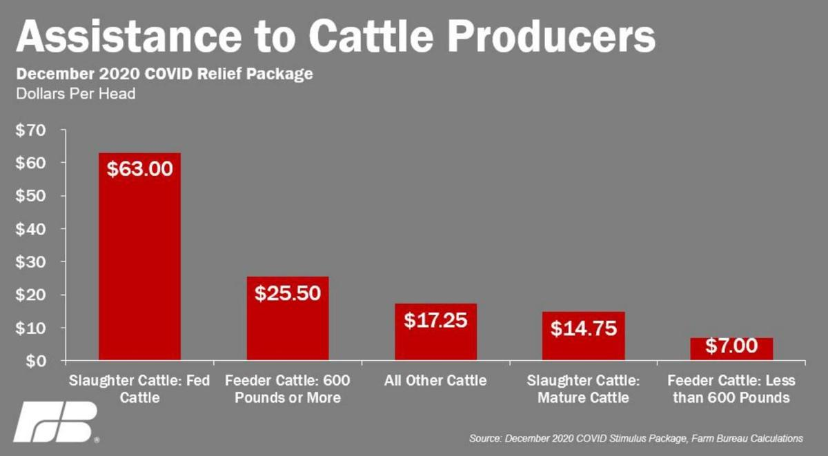 Assistance to Cattle Producers