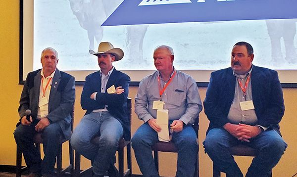 Differing success: How four ranchers approach herd management