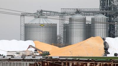 Grain elevator piles of corn