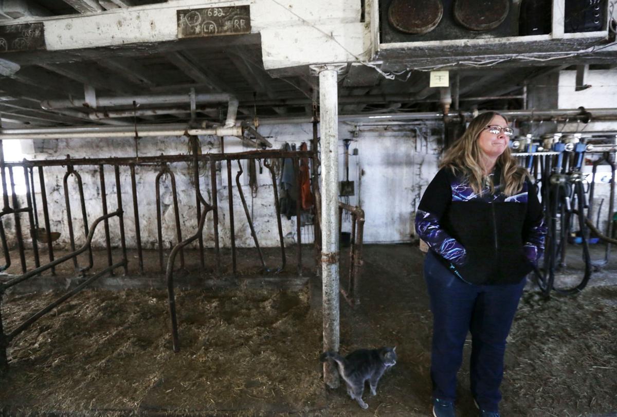 Brenda in milking parlor