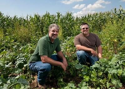 The importance of cover crops