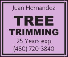Juan Hernandez Tree Trimming