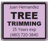 Juan Tree Trimming