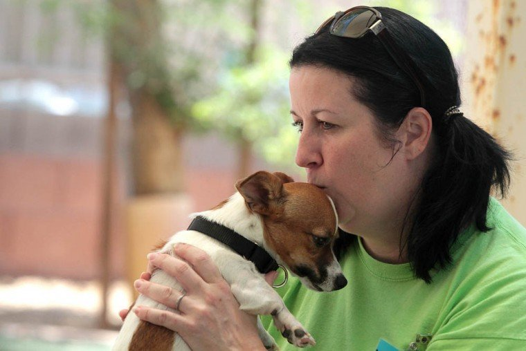 Arizona Animal Welfare League