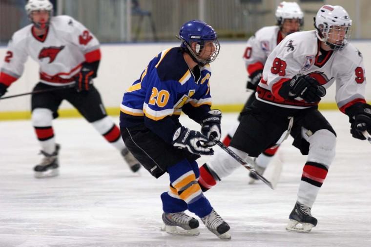 afn.011911.sp.hockey.jpg