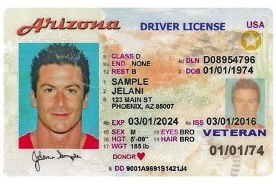 sample Arizona driver's license
