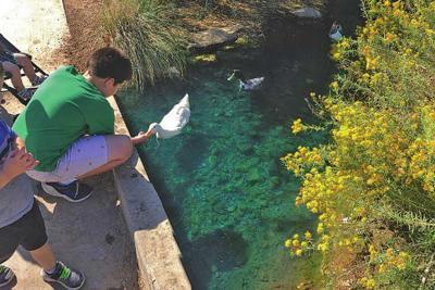 Riparian Preserve at Water Ranch